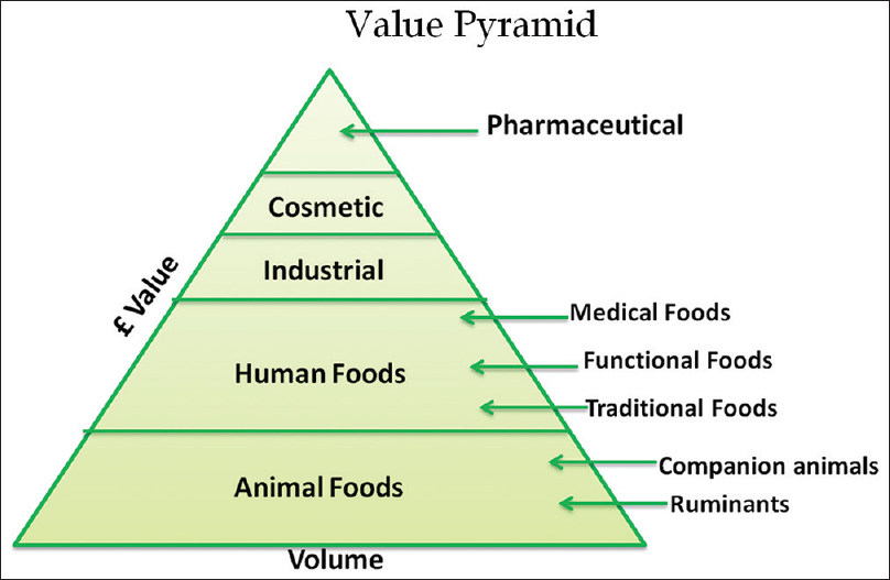 Figure 1: Value pyramid