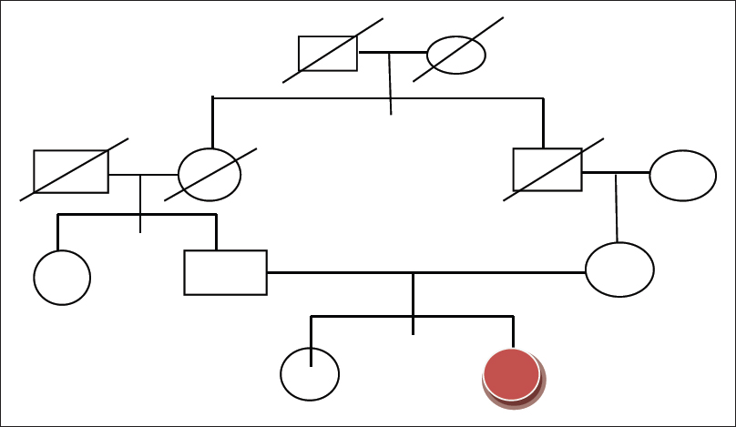 Figure 1: Pedigree chart