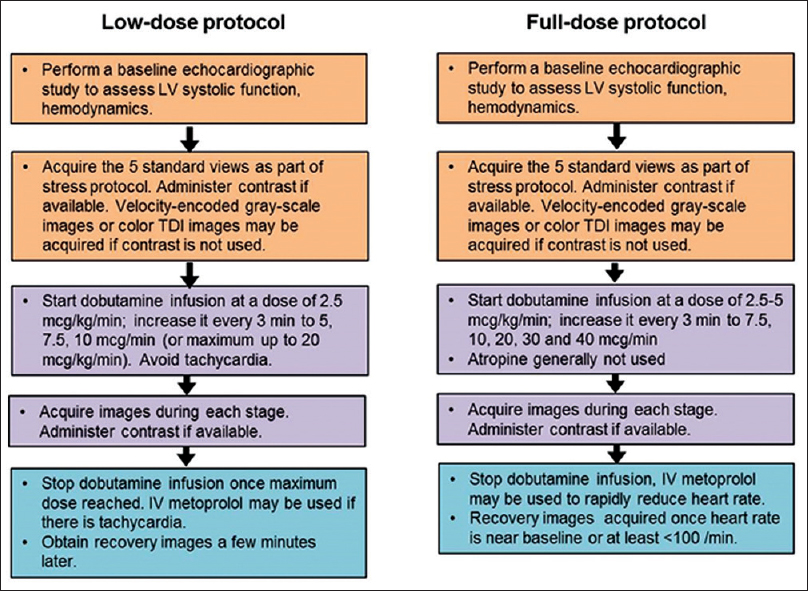 Republication- Indian academy of echocardiography guidelines